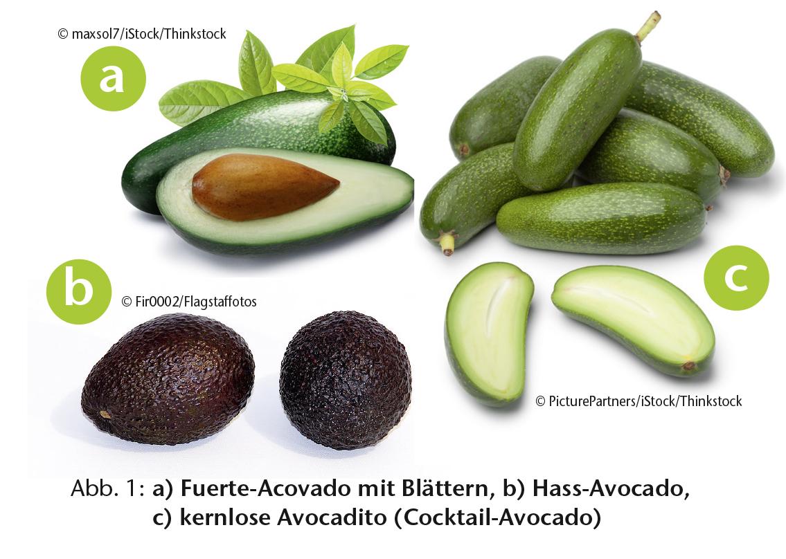 Avocado water footprint
